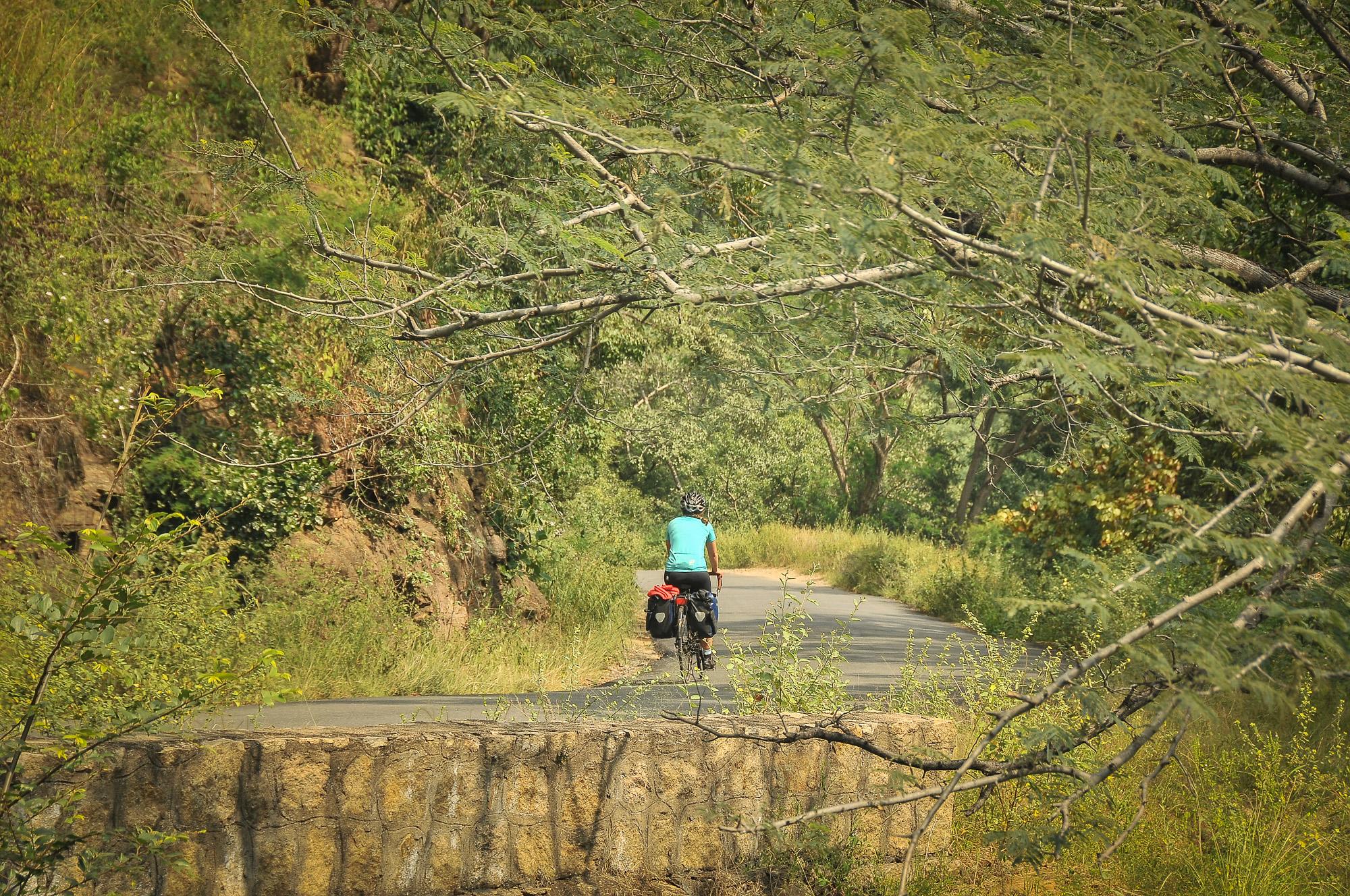 Chinnar Wildlife Sanctuary – Ind08: Bergaf voor de